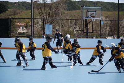 2011 Nareg Hockey