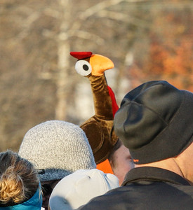New Cumberland Turkey Trot-09423