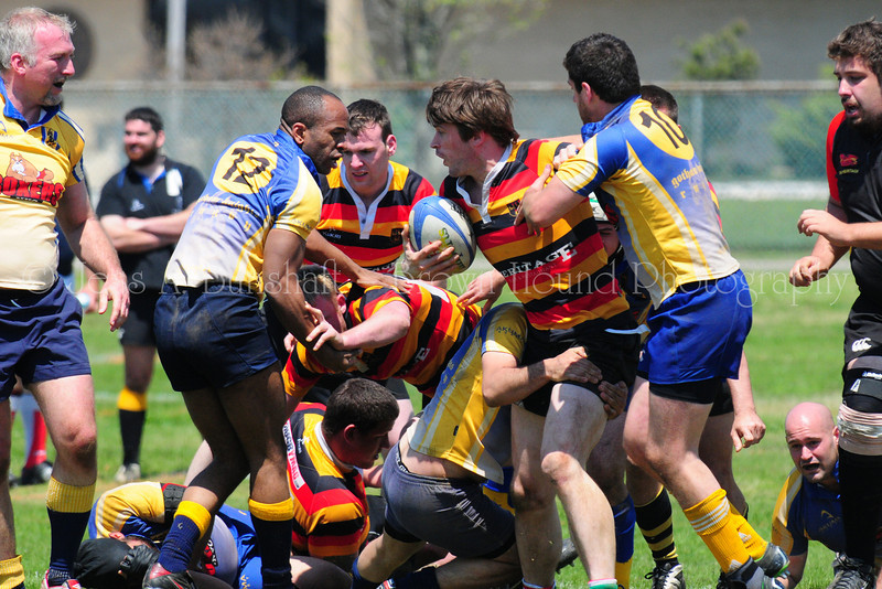 20110507_0014_LI_RugbyTourney-a