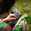 20110903_YrkXCtry-4678
