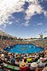 2011 Australian Open Tennis - photographer: Mark Peterson / corleve - NICULESCU, Monica (ROU) vs SCHIAVONE, Francesca (ITA) [6]