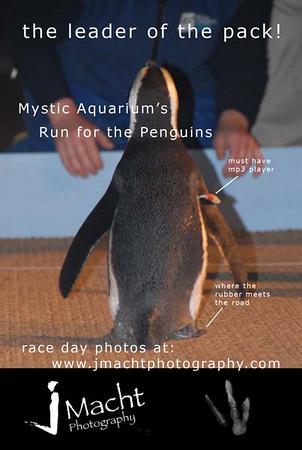 penguin prom