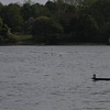 2012 LI Rowing Championships Morning races :