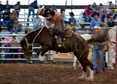 2012 Rodeo