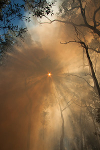 Sun through the smoke