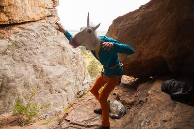 Strut your stuff Unicorn Style
