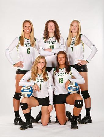 CSU Volleyball team 2013