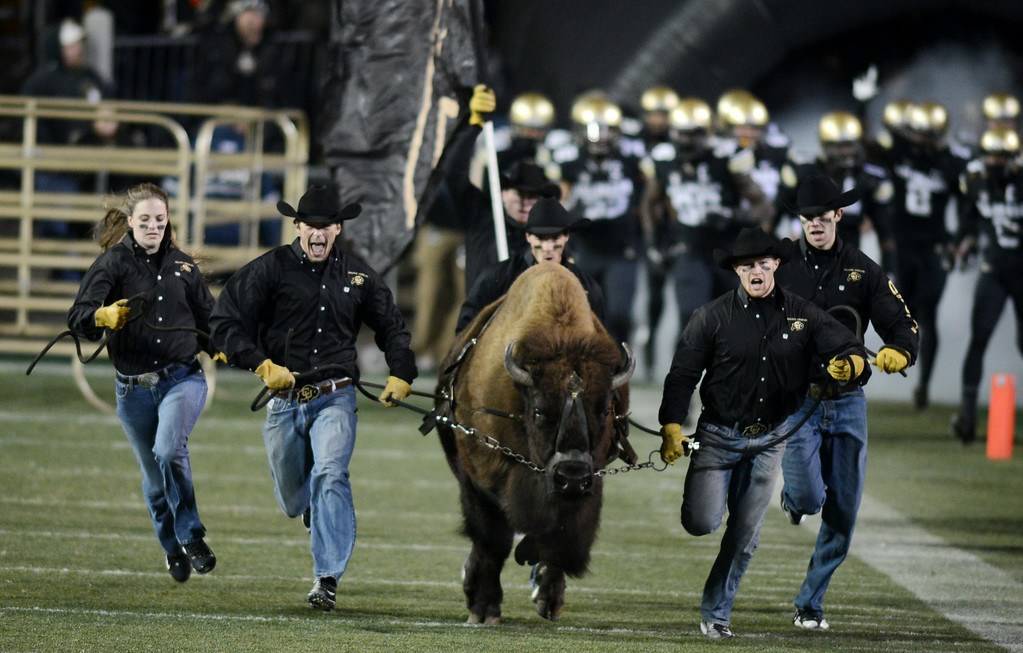 . during the first half of the November 23, 2013 game in Boulder, Colorado.  Cliff Grassmick / November 23, 2013