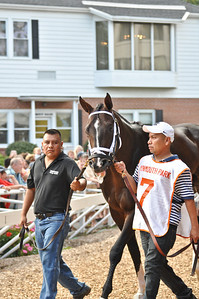 The always gorgeous, and Haskell favorite, Verrazano.