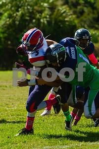 20131019_seahawks_vs_bills_1095