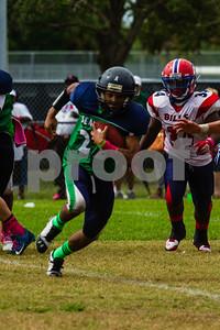 20131019_seahawks_vs_bills_1154