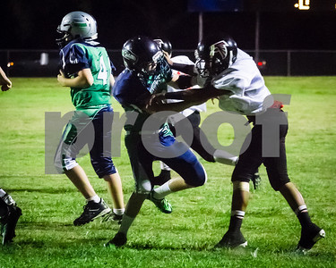 20130914_brian_supple_tbyfl_seahawks_1056