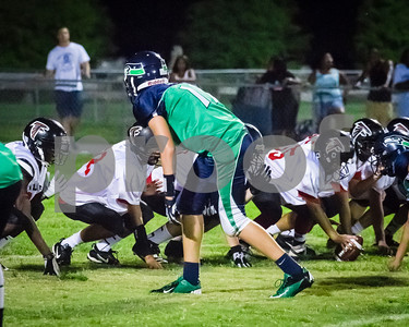 20130914_brian_supple_tbyfl_seahawks_1071