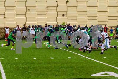 20131116_seahawks_vs_jaguars_1048