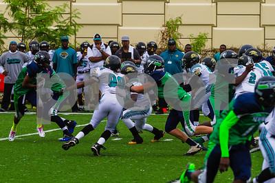 20131116_seahawks_vs_jaguars_1031