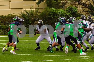 20131116_seahawks_vs_jaguars_1051
