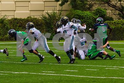 20131116_seahawks_vs_jaguars_1053