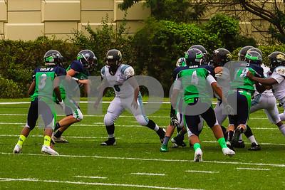 20131116_seahawks_vs_jaguars_1052