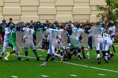 20131116_seahawks_vs_jaguars_1043