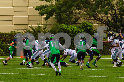 20131116_seahawks_vs_jaguars_1056