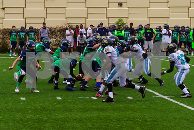 20131116_seahawks_vs_jaguars_1059