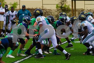 20131116_seahawks_vs_jaguars_1037