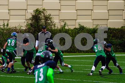 20131116_seahawks_vs_jaguars_1016
