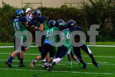 20131116_seahawks_vs_jaguars_1017-2