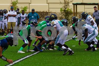 20131116_seahawks_vs_jaguars_1036