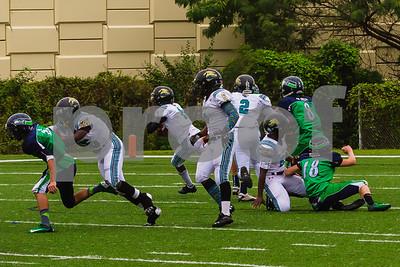 20131116_seahawks_vs_jaguars_1054