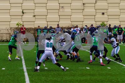 20131116_seahawks_vs_jaguars_1060