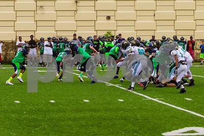 20131116_seahawks_vs_jaguars_1047