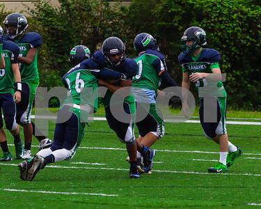 20131116_seahawks_vs_jaguars_1018