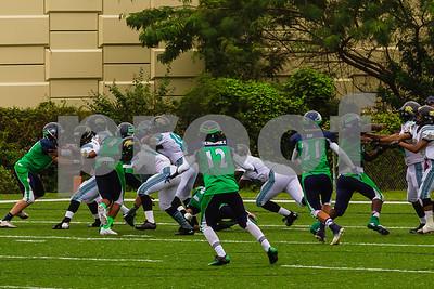 20131116_seahawks_vs_jaguars_1055