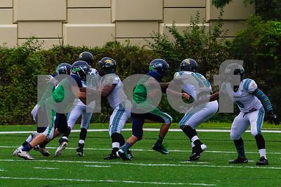 20131116_seahawks_vs_jaguars_1057