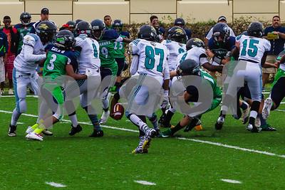 20131116_seahawks_vs_jaguars_1044