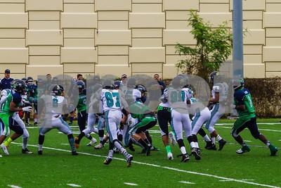 20131116_seahawks_vs_jaguars_1042