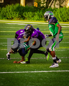 20130921_Seahawks_vs_Ravens_1037