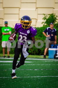 20130921_Seahawks_vs_Ravens_1023