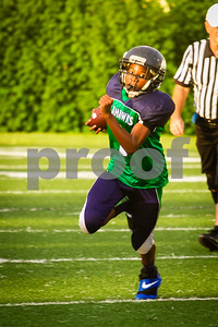 20130921_Seahawks_vs_Ravens_1035