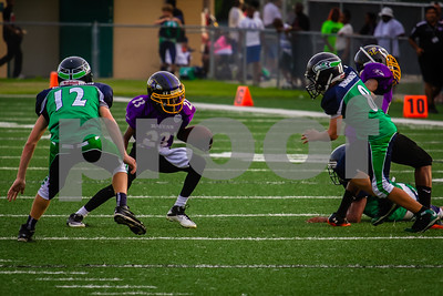 20130921_Seahawks_vs_Ravens_1032