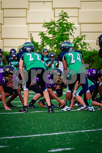 20130921_Seahawks_vs_Ravens_1022
