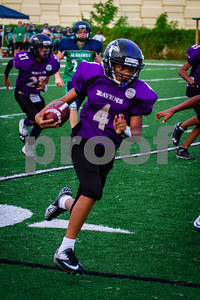 20130921_Seahawks_vs_Ravens_1028