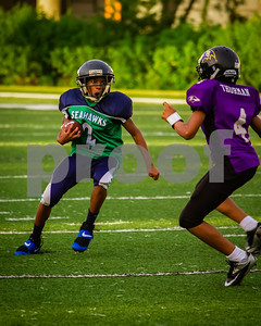 20130921_Seahawks_vs_Ravens_1036
