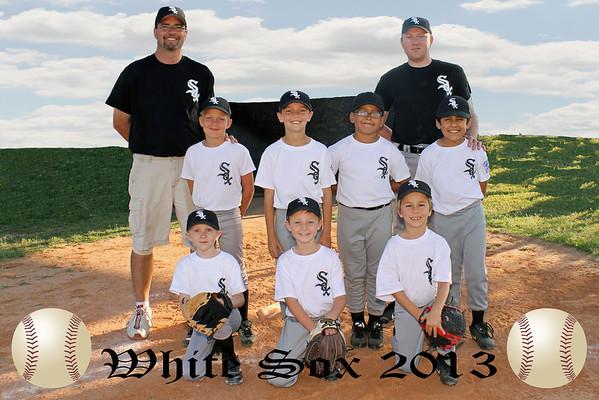 2013 White Sox