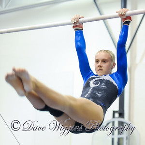 Gymnasts vs Breck - Jan 14 2014