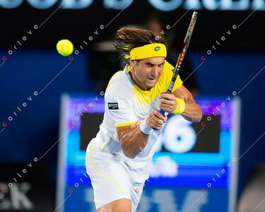 Djokovic vs Ferrer