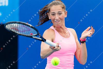 Alexandra Cadantu Practice