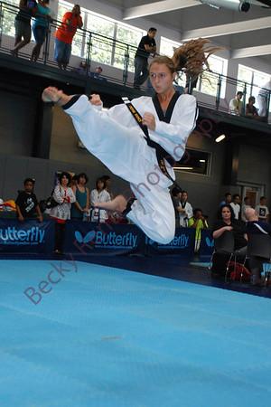 2013 US Cup Taekwondo Championships