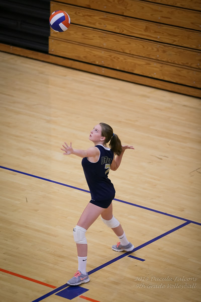 Falcons_Volleyball_8_18_2014-1